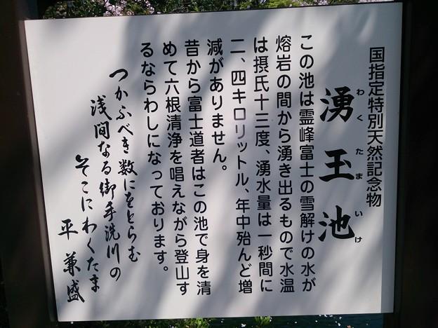 19浅間神社6 湧玉池説明