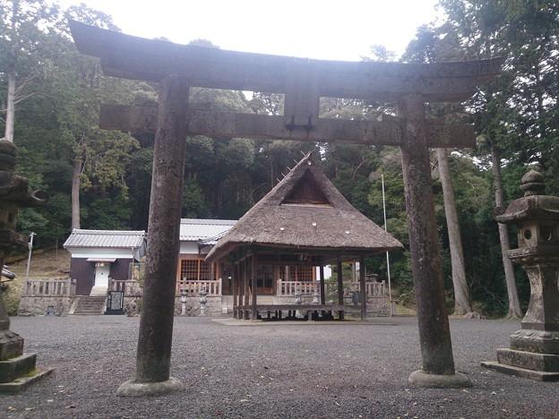008眞木山神社A03 鳥居から境内