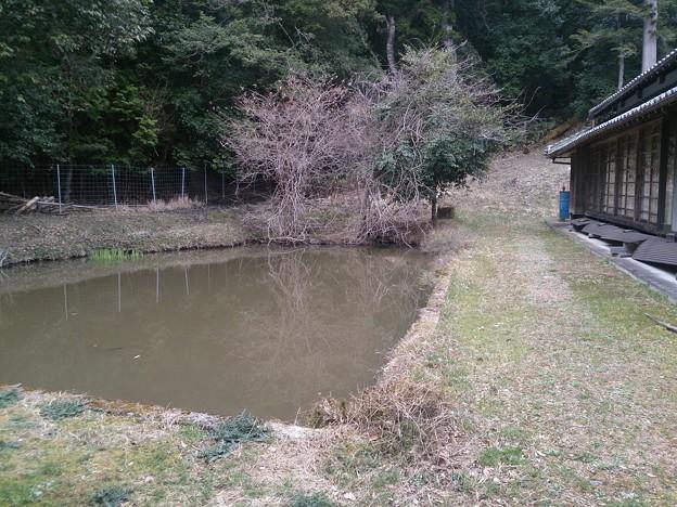 008眞木山神社A12 池