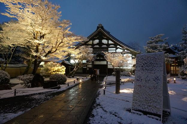 京都-高台寺