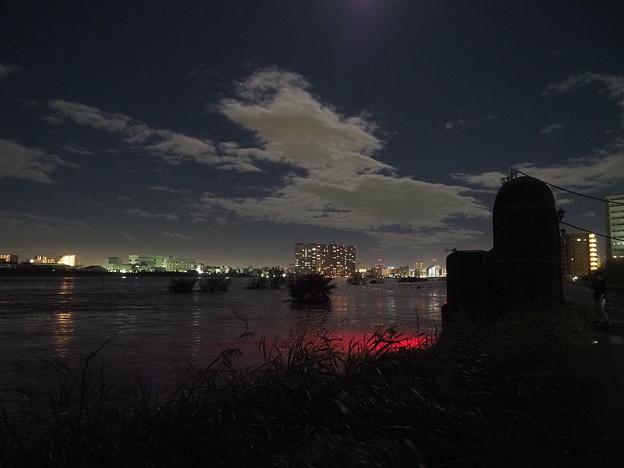 Photos: 六郷水門周辺その1