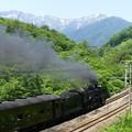 写真: 初夏の汽車旅