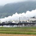 Photos: 秋雨の上越線2-2 5カット