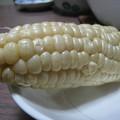 写真: 白いトウモロコシ