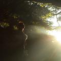 写真: 光の奇跡