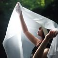 写真: 光に包まれて