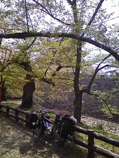 (自転車)20090504 007