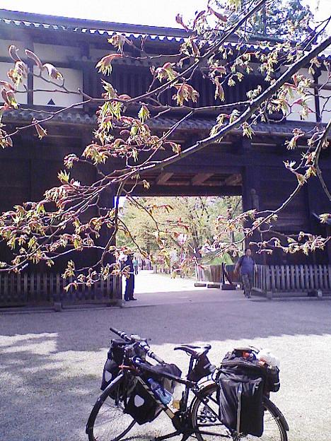 (自転車)20090504 010