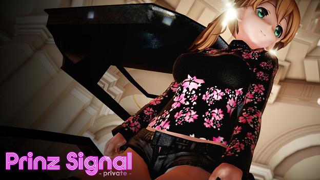 Prinz Signal - private - 夜桜
