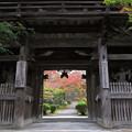 Photos: 松尾寺紅葉(1)IMG_6608