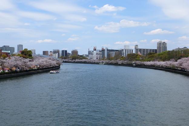 造幣局桜の通り抜け(6)IIMG_5653