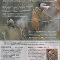 野鳥の会(大阪支部)1月号2ページ目
