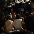 写真: 円山公園賞夜櫻
