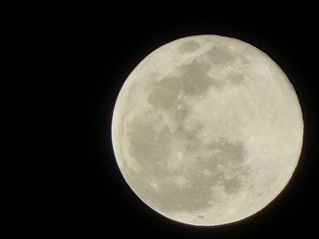Photos: 2月9日天体にはもってこい寒空に輝く満月