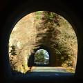Photos: トンネルの中から