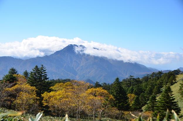 黄葉と石鎚山
