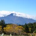 Photos: 黄葉と石鎚山