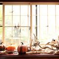 写真: 窓際のハロウィン
