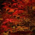 山中湖夕焼けの渚 紅葉まつり2018