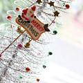 Photos: 医院もクリスマス