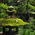Photos: 苔生す仏閣