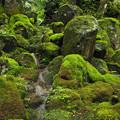 Photos: 緑岩