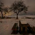 Photos: 氷結