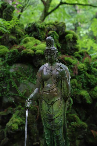 苔生す神社
