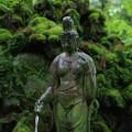 Photos: 苔生す神社