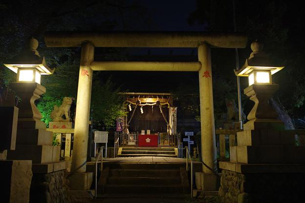 黄昏の神社~