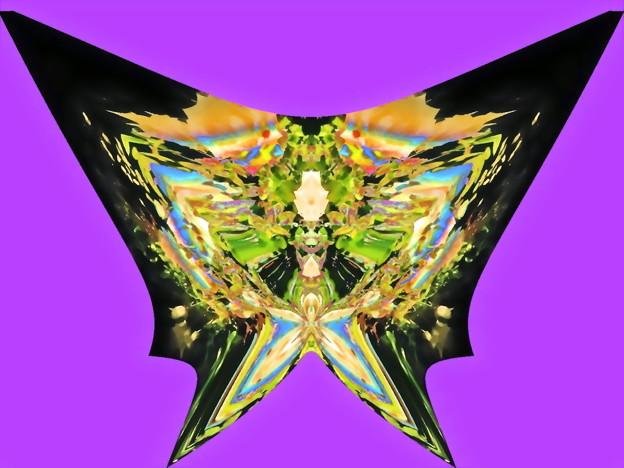 蝶の言葉-07a(3)