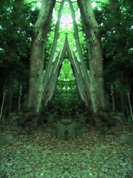 世田谷区_桜丘すみれば自然庭園-09森の教会
