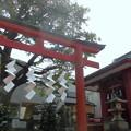 写真: 満桜稲荷神社-03a