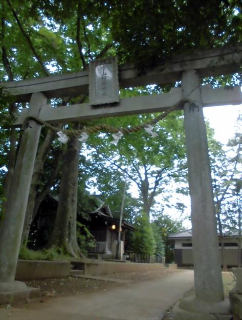 宇山稲荷神社-02鳥居b