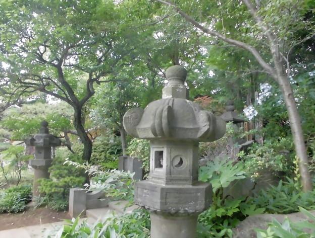 Photos: 久成院-05境内a