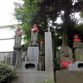 Photos: 久成院-11墓域d