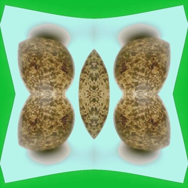 恐竜の卵-03b(1-2c)