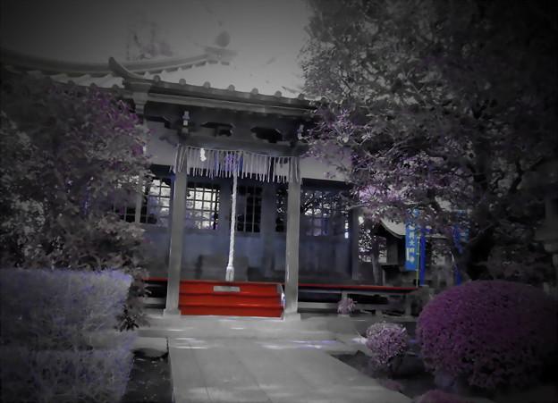 西澄寺-08薬師堂a(1-2b)
