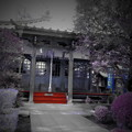 Photos: 西澄寺-08薬師堂a(1-2b)
