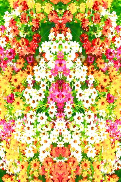 花壇-04