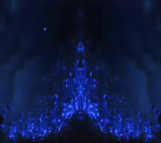 蛍烏賊-01b