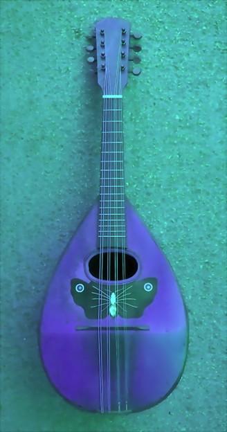 マンドリン-01c