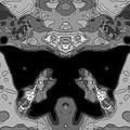 精神的退化-01