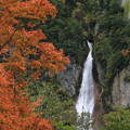 写真: 流星の滝
