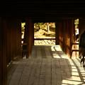 Photos: 東福寺 (3)