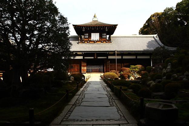 東福寺 (6)