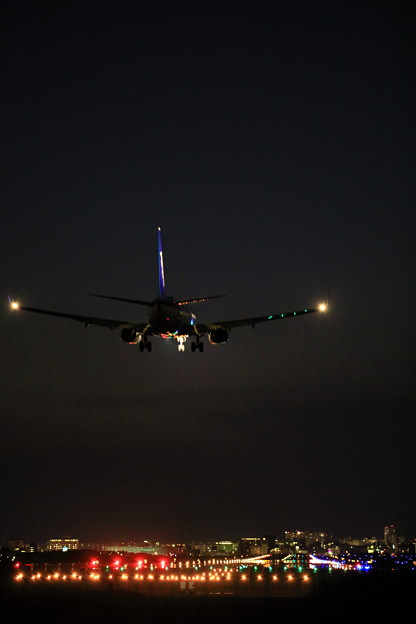 写真: 737