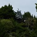 写真: 大瀬神社