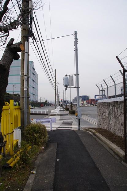 東京国際コンテナターミナル