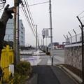 写真: 東京国際コンテナターミナル